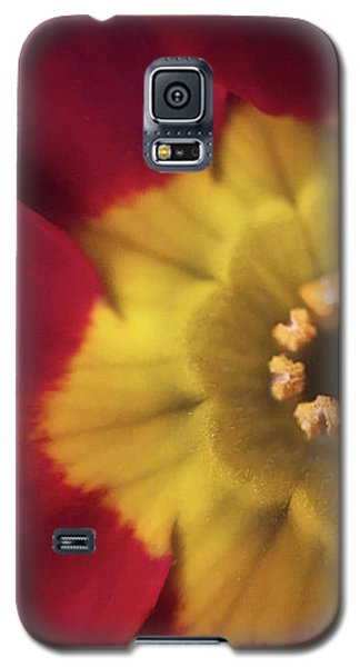 Velvet Crush Galaxy S5 Case