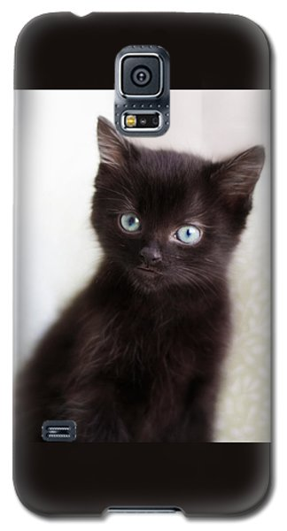 Galaxy S5 Case featuring the photograph Velvet - Square Version by Amy Tyler