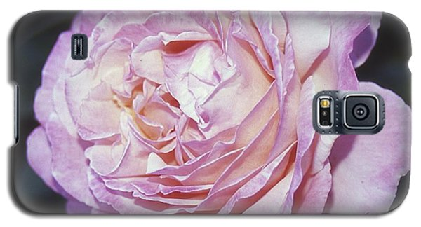 Velvia Rose Galaxy S5 Case