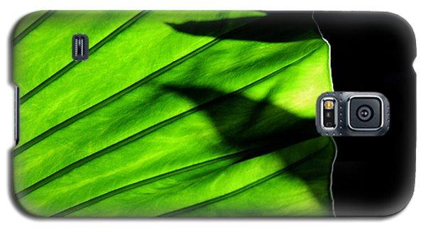 Verdant Galaxy S5 Case by Silke Brubaker
