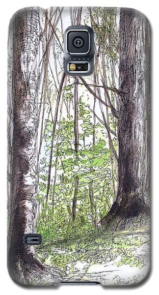 Galaxy S5 Case featuring the painting Vermont Woods by Laurie Rohner