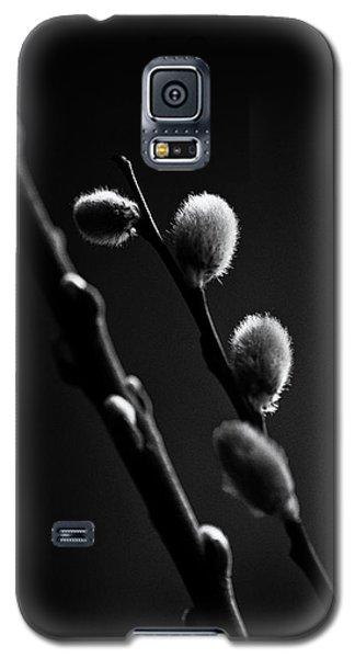 Vernal Awakening Galaxy S5 Case