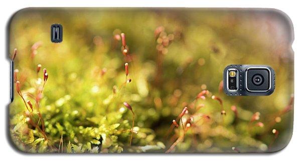 Vernal Impression Galaxy S5 Case