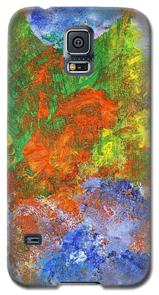 Verve Galaxy S5 Case