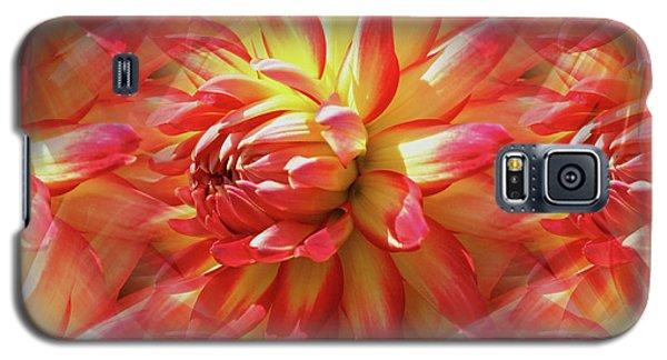 Vibrant Dahlia Petals Galaxy S5 Case