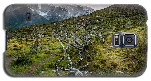 Vibrant Desolation Galaxy S5 Case by Andrew Matwijec