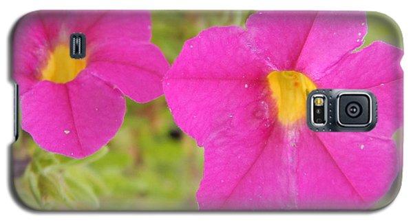 Vibrant Flowers Galaxy S5 Case