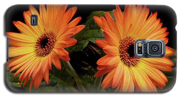 Galaxy S5 Case featuring the photograph Vibrant Gerbera Daisies by Terence Davis
