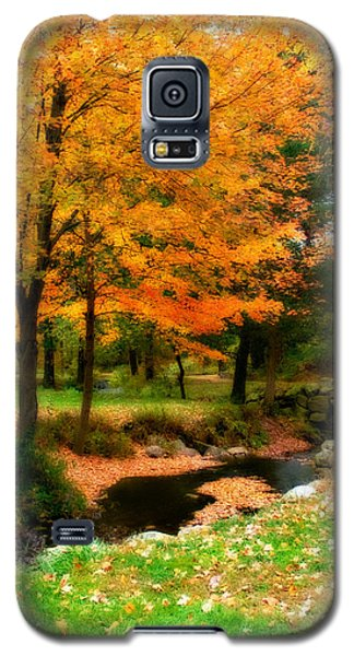 Vibrant October Galaxy S5 Case