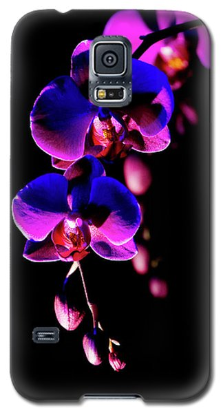 Galaxy S5 Case featuring the photograph Vibrant Orchids by Ann Bridges