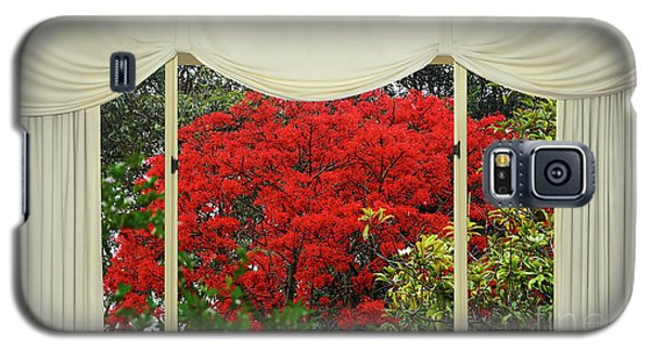 Galaxy S5 Case featuring the photograph Vibrant Red Blossoms Window View By Kaye Menner by Kaye Menner