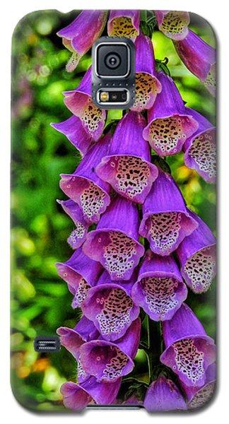 Vibrant Tones I Galaxy S5 Case