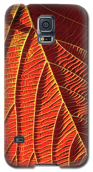 Galaxy S5 Case featuring the digital art Vibrant Viburnum by ABeautifulSky Photography