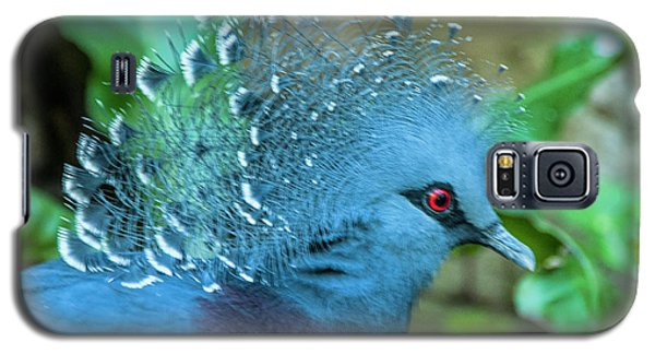 Victoria Crowned Pigeon Galaxy S5 Case