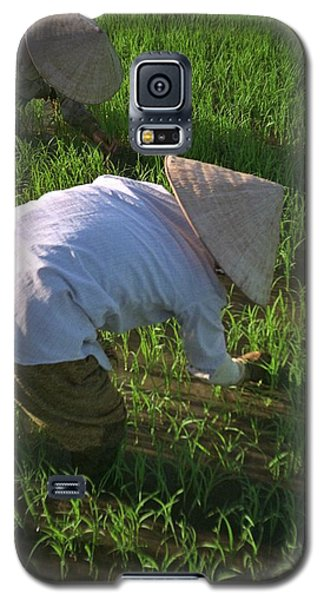 Vietnam Paddy Fields Galaxy S5 Case