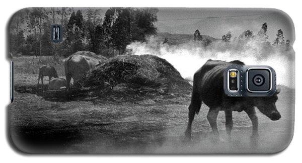 Vietnamese Water Buffalo  Galaxy S5 Case