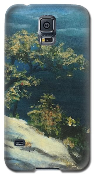 View From The Top Galaxy S5 Case by Mary Lynne Powers