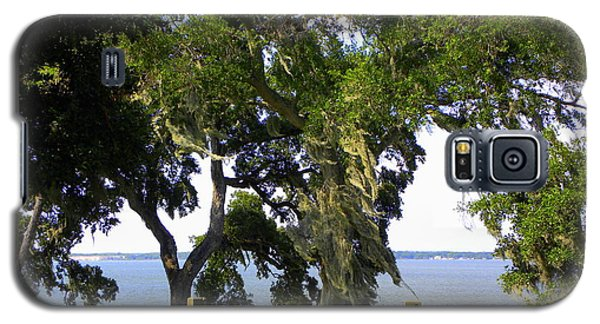 View Of Old Tampa Bay Galaxy S5 Case by Terri Mills