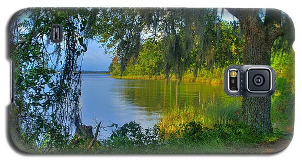 View Under The Spanish Moss Galaxy S5 Case by Brian Wright