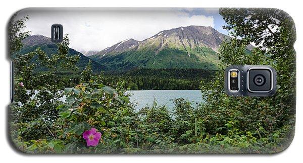 Views In Alaska Galaxy S5 Case
