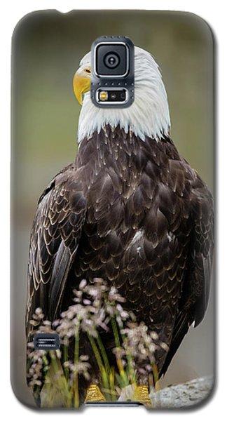Vigilance Galaxy S5 Case