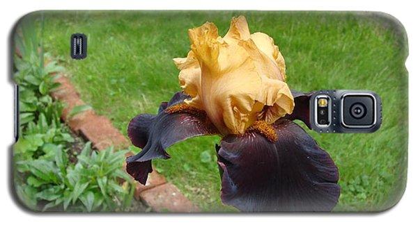 Vigilante Iris Galaxy S5 Case