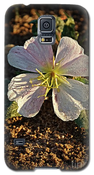 Galaxy S5 Case featuring the photograph Vignette Evening Primrose by Robert Bales