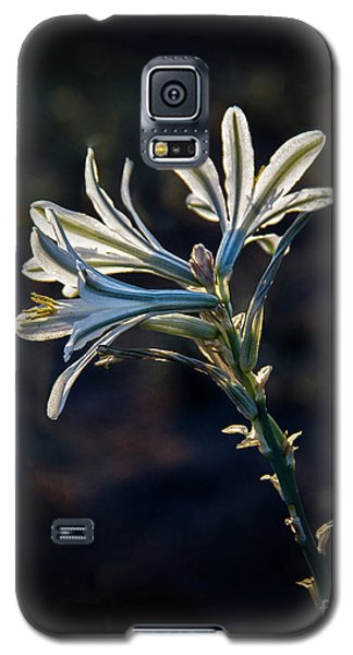 Galaxy S5 Case featuring the photograph Vignetted Ajo Lily by Robert Bales
