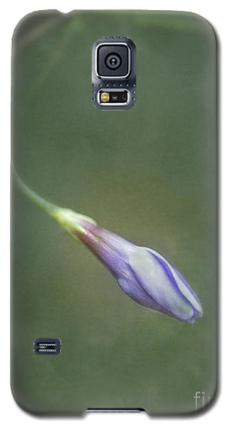 Vinca Galaxy S5 Case by Priska Wettstein
