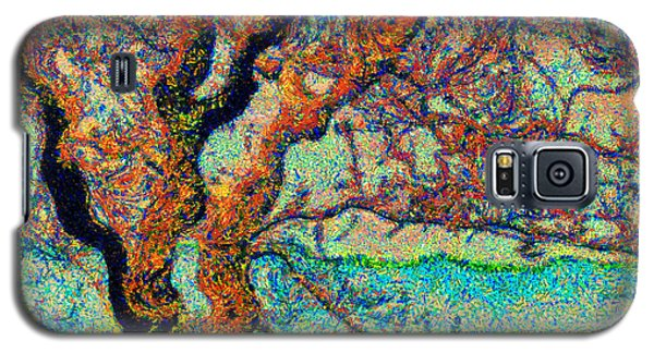Vincent At Duxbury Bay Galaxy S5 Case