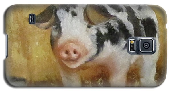 Vindicator The Spotted Pig Galaxy S5 Case by Cheri Wollenberg