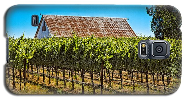 Vines And Barn Galaxy S5 Case