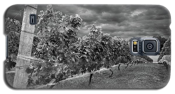Vineyard Galaxy S5 Case
