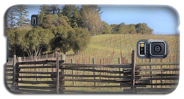 Vineyard In The Spring Galaxy S5 Case