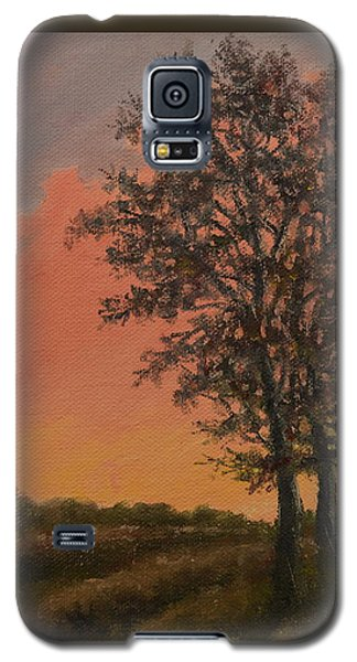Vineyard Sundown Galaxy S5 Case