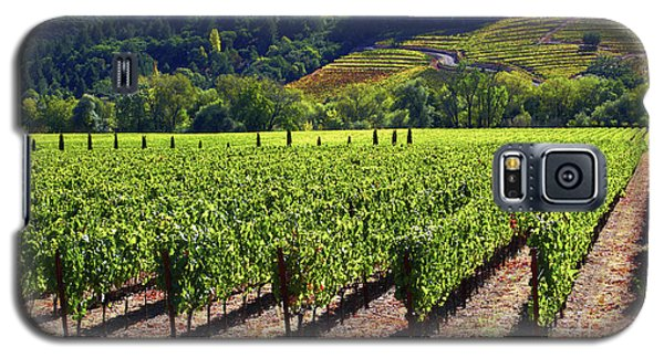 Vineyards In Sonoma County Galaxy S5 Case