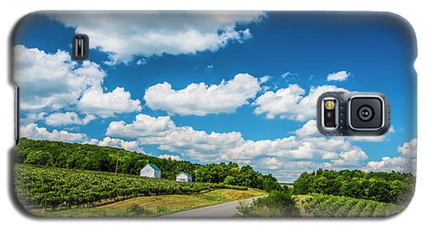 Vineyards In Summer Galaxy S5 Case by Steven Ainsworth