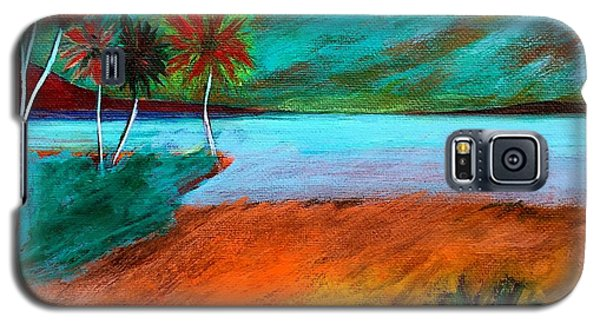 Galaxy S5 Case featuring the painting Vinoy Park Twilight by Elizabeth Fontaine-Barr