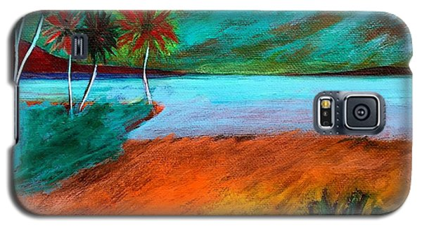 Vinoy Park Twilight Galaxy S5 Case by Elizabeth Fontaine-Barr