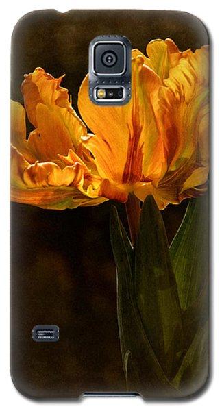 Vintage 2017 Tulip Galaxy S5 Case by Richard Cummings