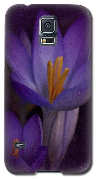 Vintage Crocus 2017 Galaxy S5 Case