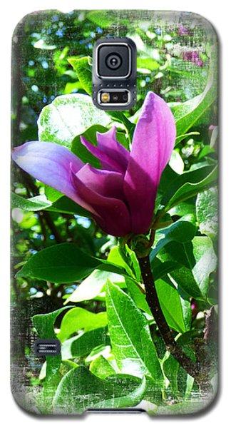 Magnolia Galaxy S5 Case - Single Magnolia. by Trudee Hunter