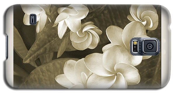 Galaxy S5 Case featuring the photograph Vintage Plumeria by Ben and Raisa Gertsberg