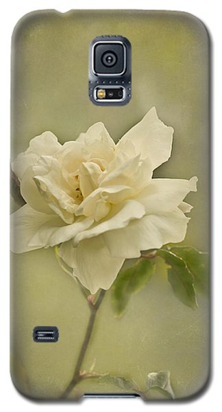 Galaxy S5 Case featuring the photograph Vintage Rose by Jacqi Elmslie