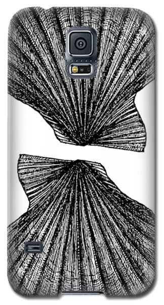 Galaxy S5 Case featuring the photograph Vintage Scallop Shells by Edward Fielding