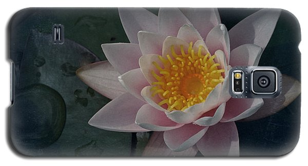 Vintage Water Lily Galaxy S5 Case by Richard Cummings