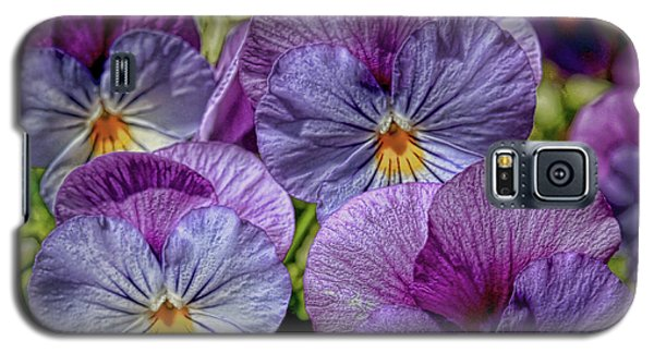Galaxy S5 Case featuring the photograph Viola by Bonnie Willis