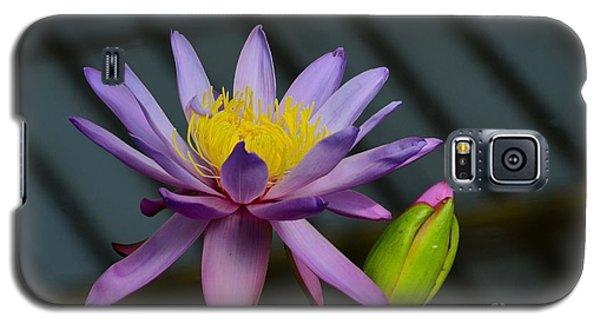 Violet And Yellow Water Lily Flower With Unopened Bud Galaxy S5 Case