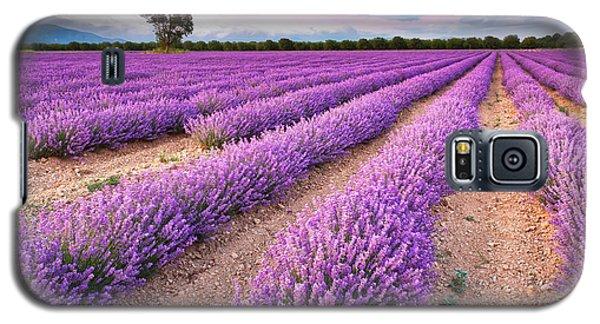 Violet Dreams Galaxy S5 Case