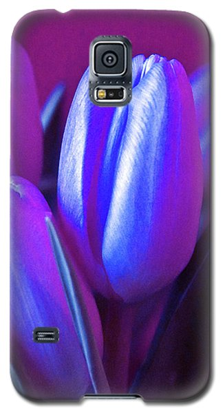 Violet Poetry Of Spring Galaxy S5 Case
